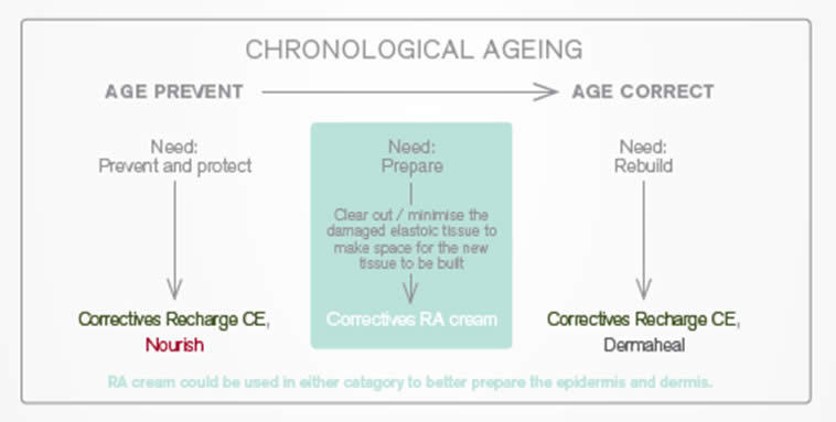 chronological ageing